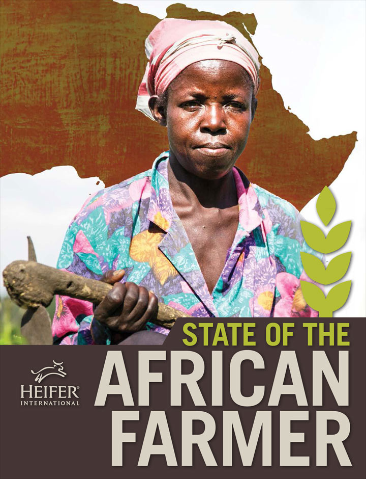 Click to download The State of the African Farmer